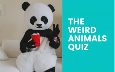 Weird Animals Quiz